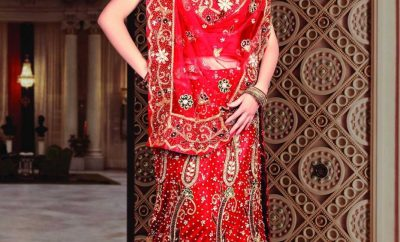New traditional indian wedding dress